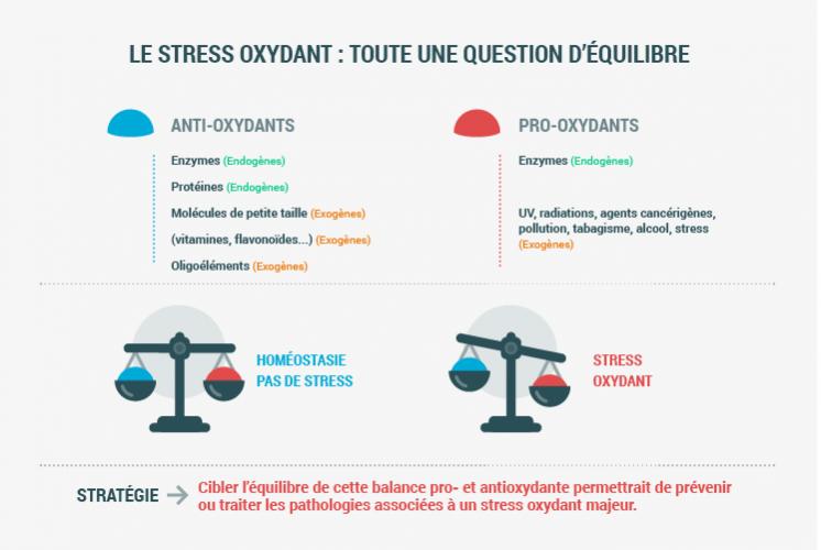 Les causes et effets du stress oxydatif