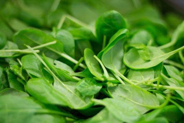 épinard-source-de-nitrate