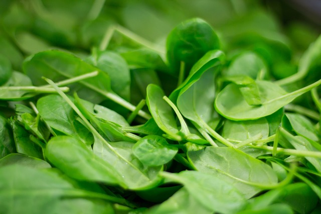 Spinach is the vegetable that contains the most nitrate