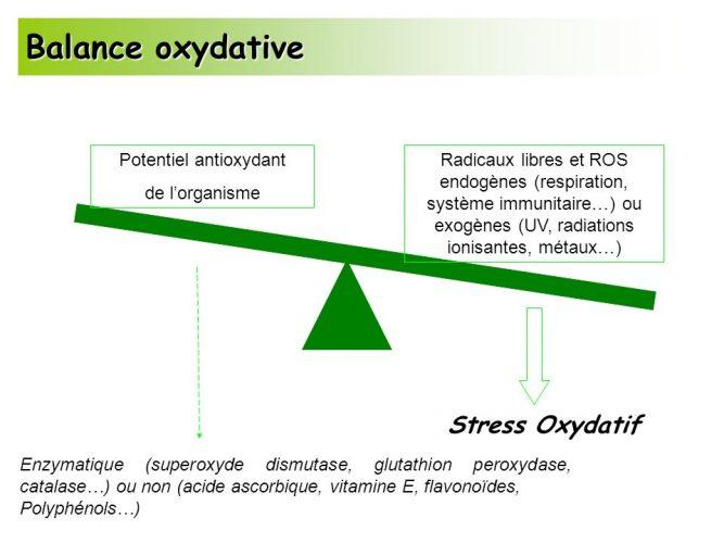 Le stress oxydatif est la cause de plusieurs graves maladies