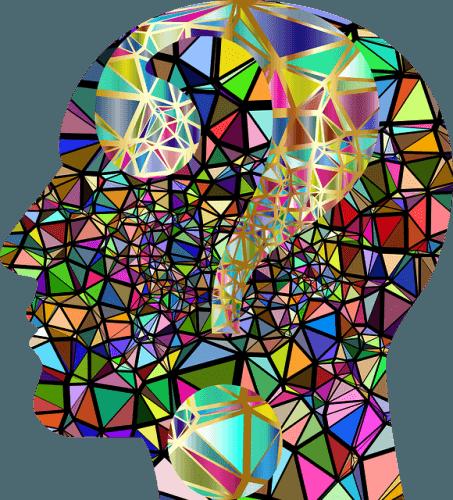 Phytonutriments et santé cérébrale