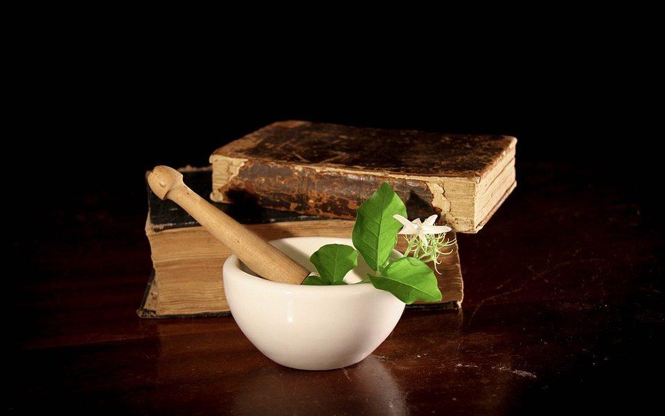 Végétaux et leurs apports médicinaux possibles