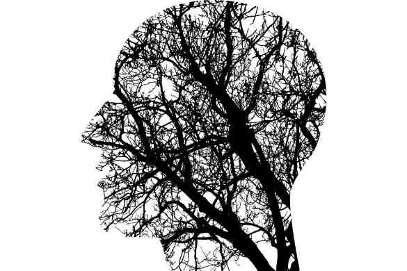 Maladies du cerveau les plus courantes