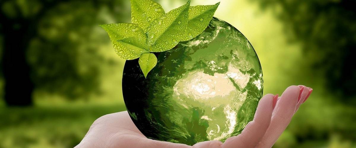 La terre végétale entre nos mains