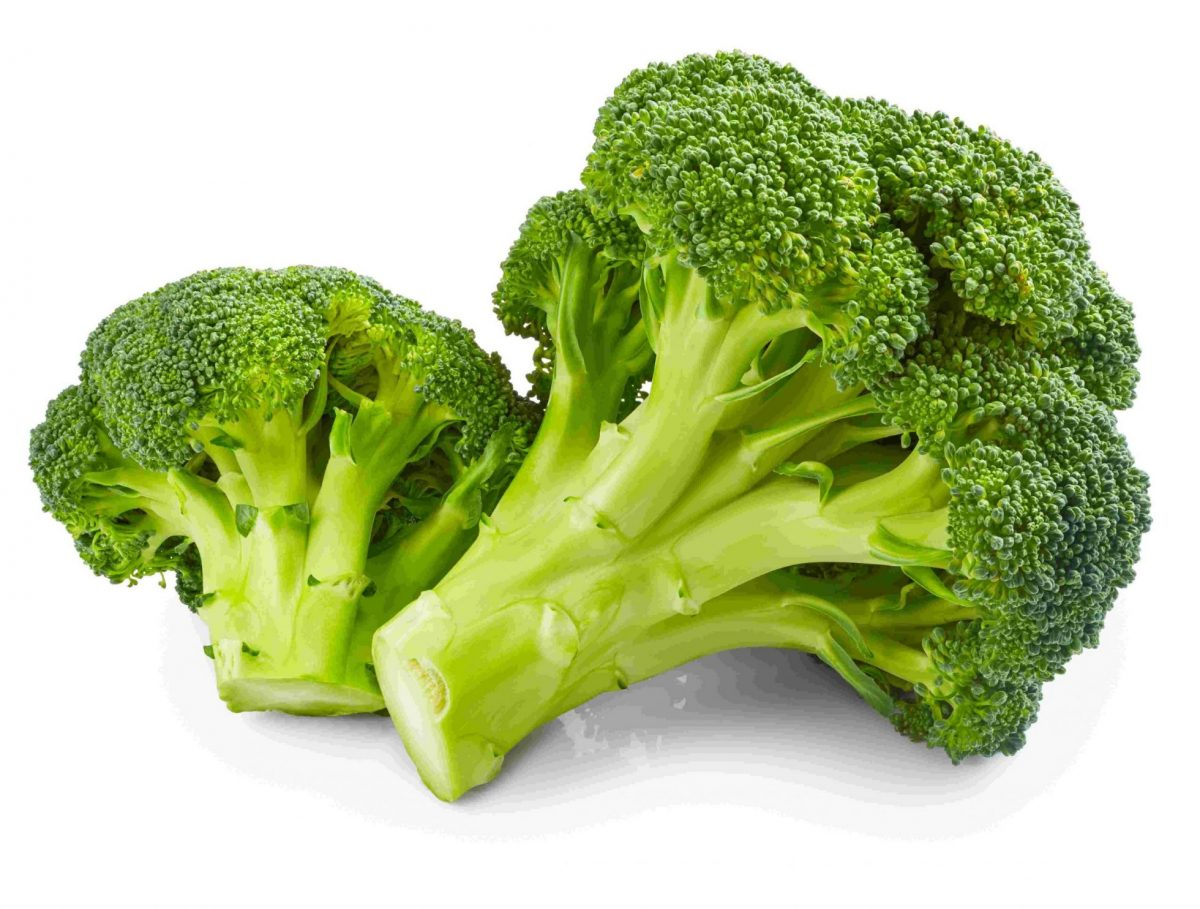 brocoli - poudre de Phytonutriment Canada