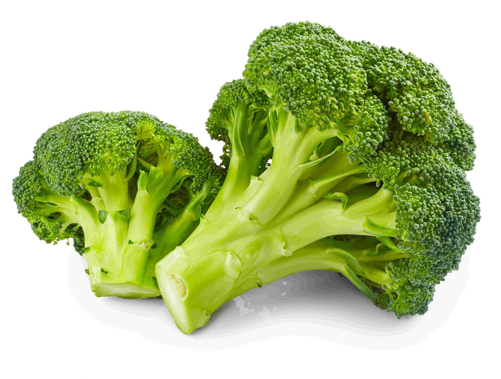 Brocoli (Brassica oleracea/italica)