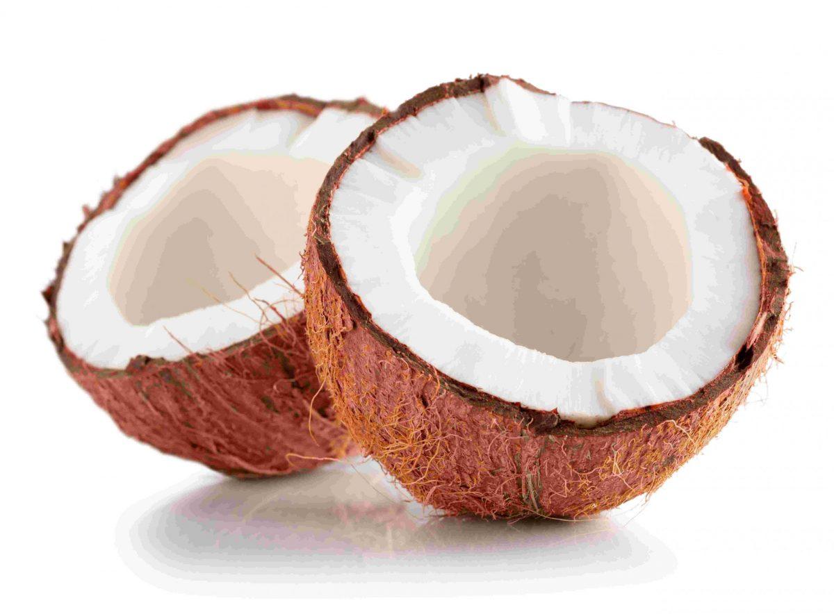 Noix de coco (cocos nucifera)