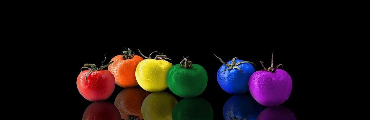 Tomates riches en phytonutriments avec couleur exceptionnelles
