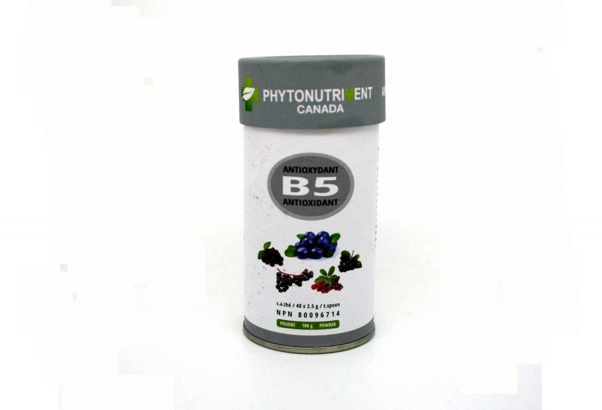 Poudre B5 Formule Antioxydant